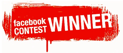 facebook contest Ecommerce Link Building Strategies & Tactics
