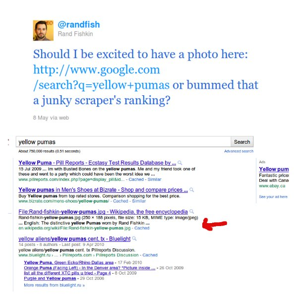rand on panda Why You Should Follow Rand Fishkin On Twitter